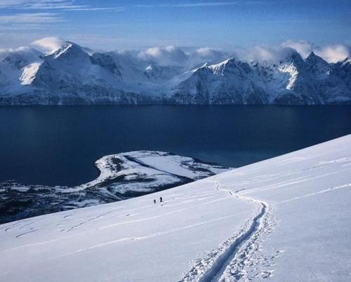 Skiing with a view to Lyngen Alps
